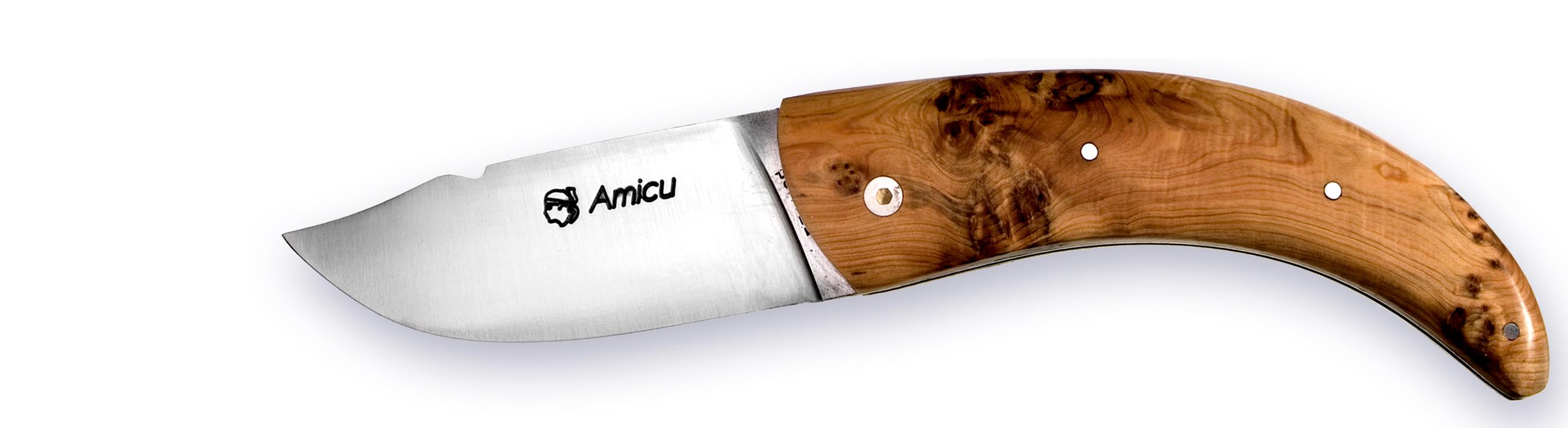 Corse-Amicu